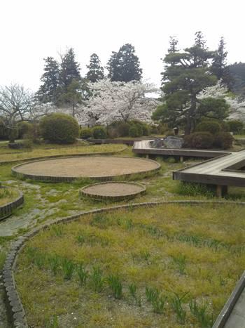 城山菖蒲園