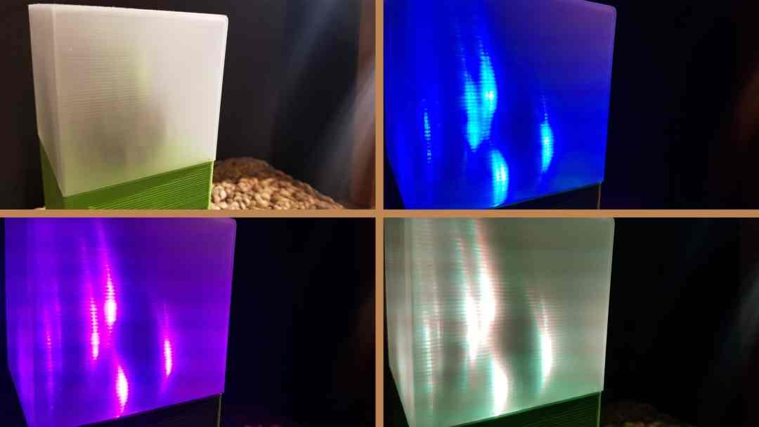 Filament-Transparent-Diffusion-Vase