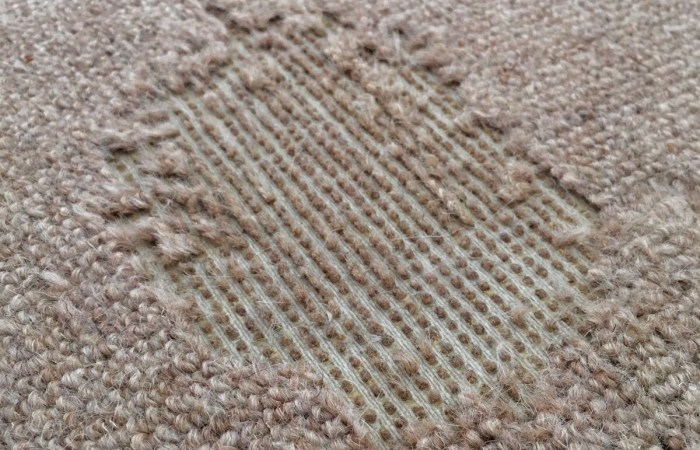 Carpet Moth Damage - Bentley environmental - pest control