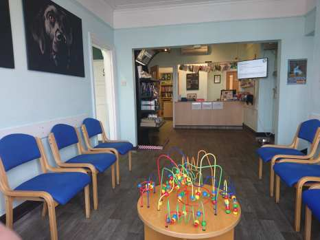 Main waiting room for dogs at Bentley Road Vets Doncaster