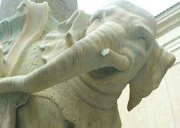 elefante-bernini-zanna-spezzata-roma
