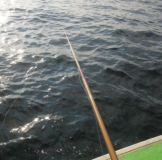 船石鯛 釣り方