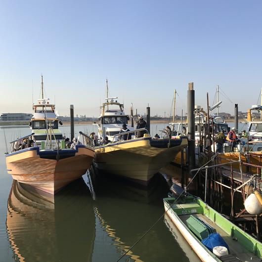 東京湾 トラフグ釣り