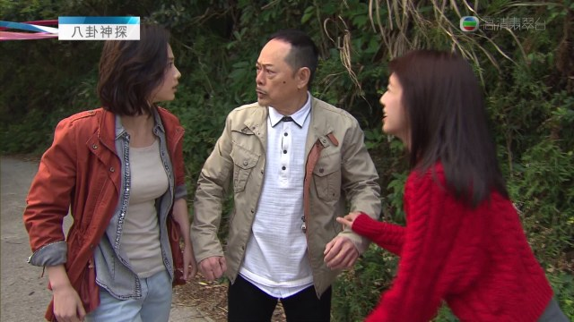 朱晨麗 (4)