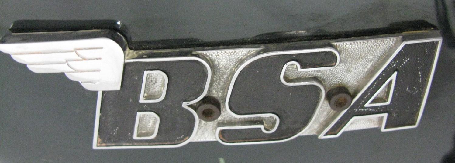 BSA Logo-BER