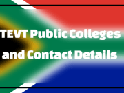 TEVT Colleges