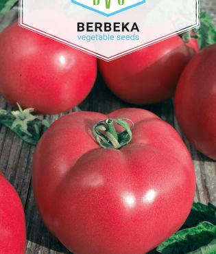 Pomidor malinowy BER 1g