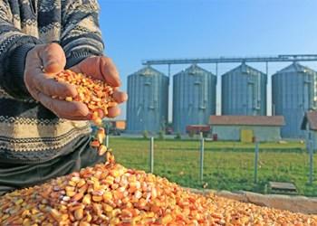 implementacion-sistema-de-gestion-de-calidad-industria-alimentos-500