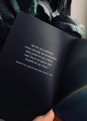 """Siyah bir sayfanın içinde şu yazıyor """"Işık her şeyi aydınlatıp ortaya çıkardığı için kendisinden daha parlak bir şey yokken nasıl oluyor da ondan daha karanlık bir şey olamaz?"""""""