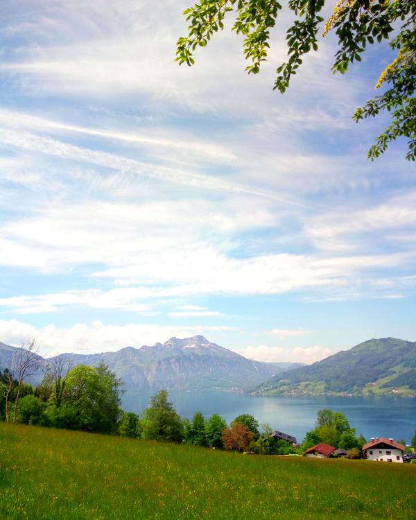 Ausgangspunkt zur Höllengebirge Wanderung mit Hund zum Dachsteinblick und Brennerin, Österreich, Salzkammergut, Attersee