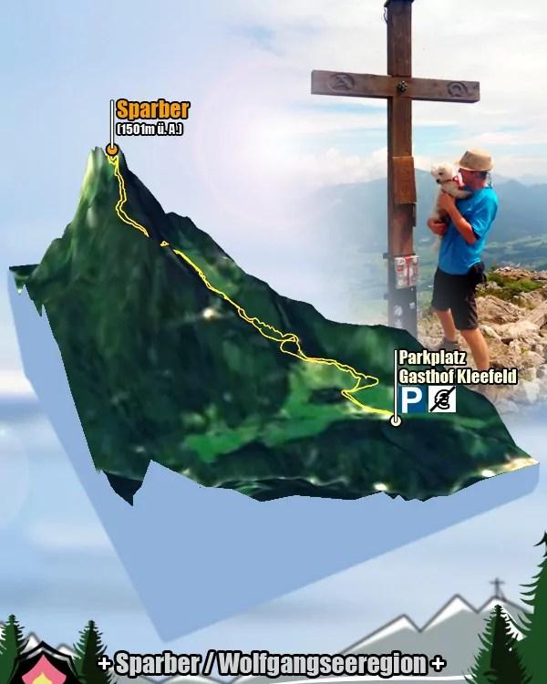 Tourgrafik der Bergtour von Strobl am Wolfgangsee auf den Sparber