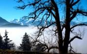 Blick auf die schweizer Berge