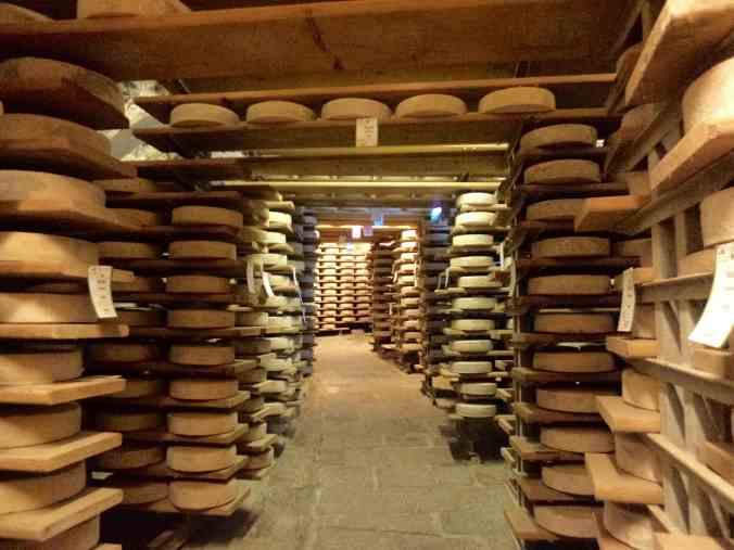 Unendliche Käseleiber in den Crotti von Chiavenna (Foto: C.Peitz)