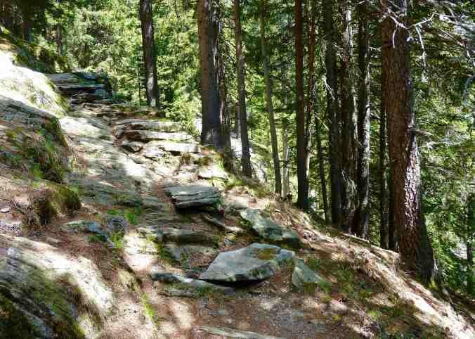 Auf angenehmen Waldpfaden hinauf nach Tombal