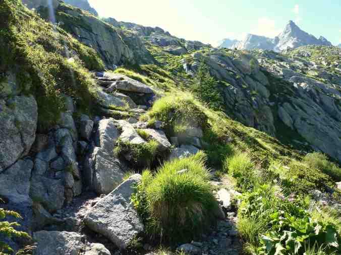 Weg zur Albigna-Hütte: Idylle zwischen Stein und Pflanzen