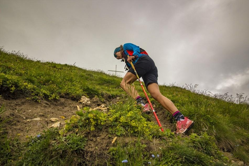 Stöcke für den Vortrieb beim Bergaufgehen.