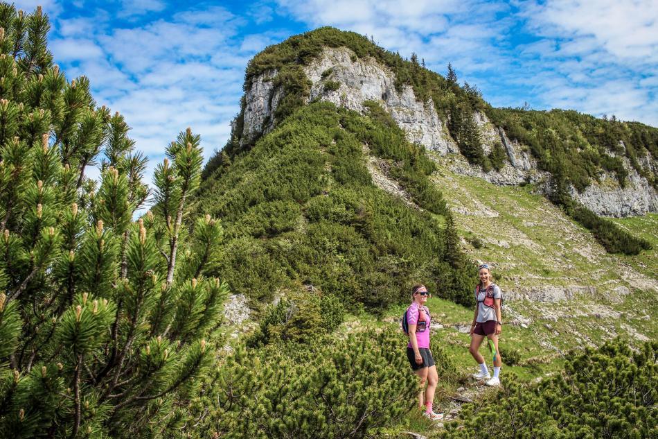 Osterhorngruppe Wandern Bergalm