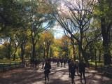 Central park - Poet's walk