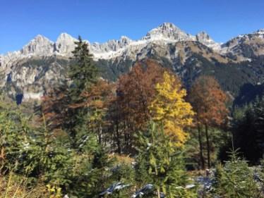 Herbststimmung mit Rot Flüh, Gimpel und Kellenspitze