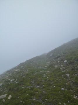 Nebel Nebel Nebel