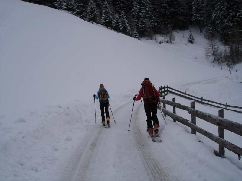 Hörndle (2603m)