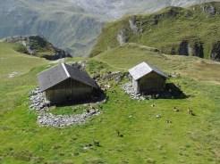 Gleckalm 2264 m