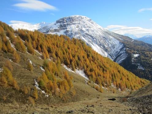 Wanderung Grauner Berg Suedtirol IMG_5875