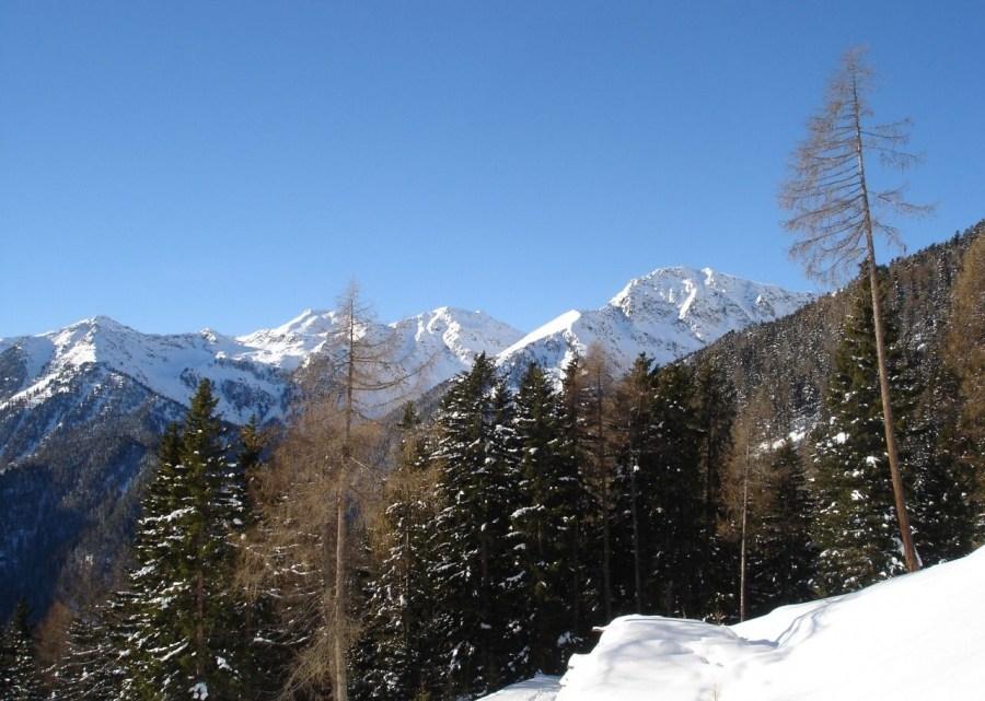 Kaserbacher Hörndl (2578m)