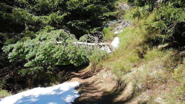 Chiläberg Waldweg gesperrt