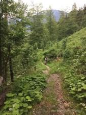Trail-artiger Abschnitt auf dem Rückweg nach Imberg