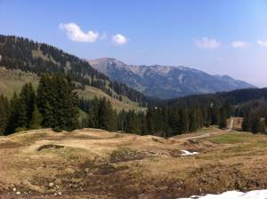 Kurz vor der Alpe