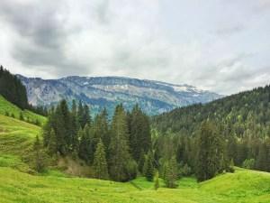 Oberhalb der Alpe Dinigörgen