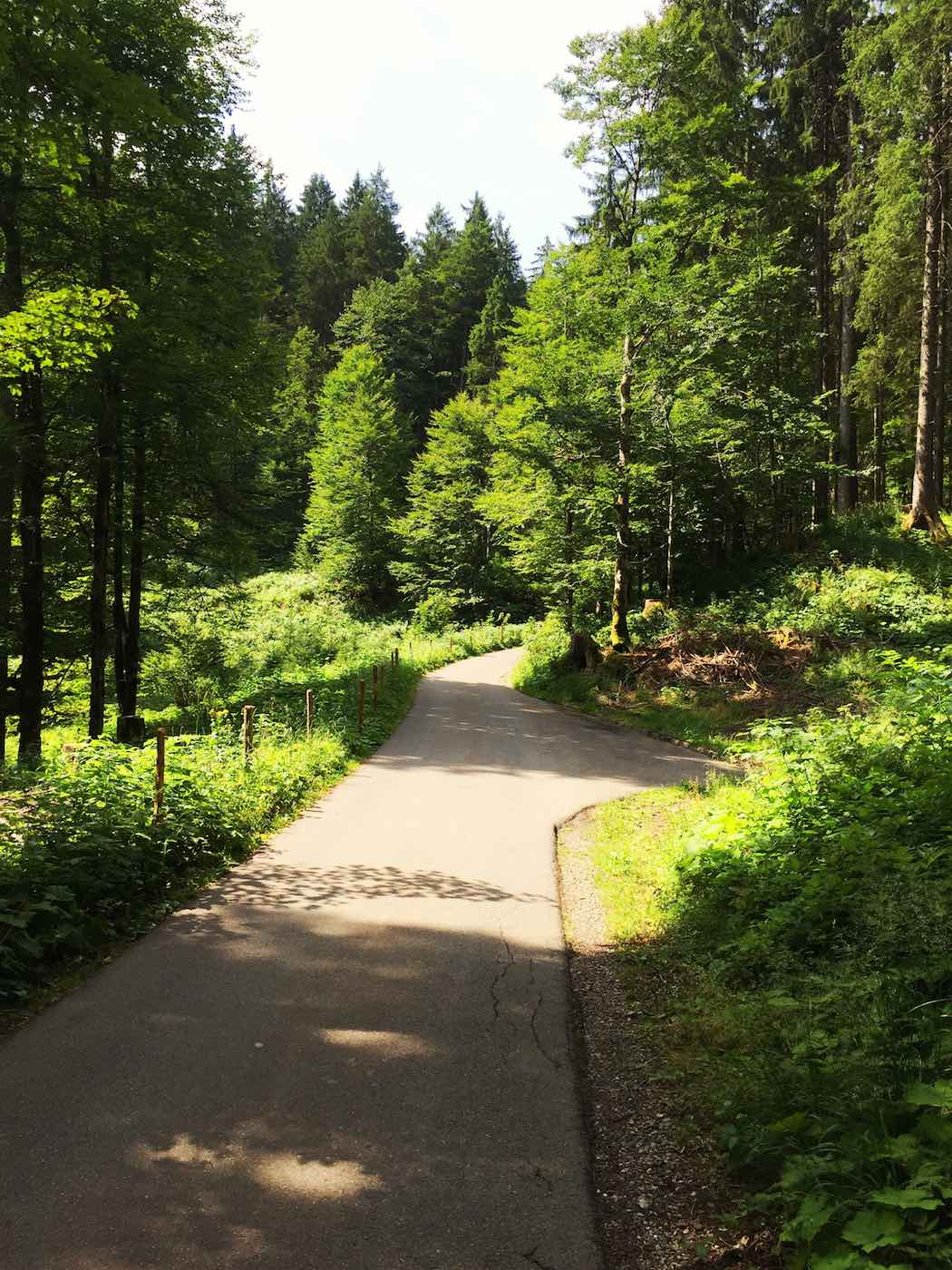Auffahrt ins Rappenalptal