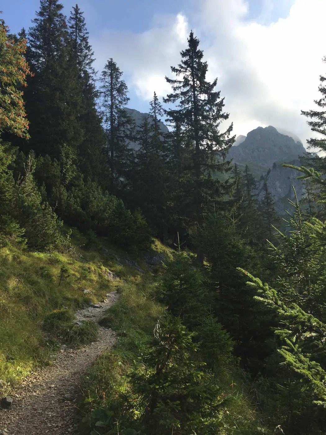 Weg vom Gimpelhaus zur Kellenspitze