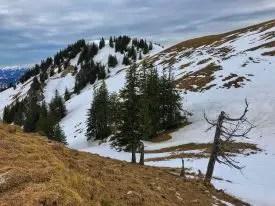 Blick zum Gipfelkreuz des Spieser, rechts der Große Hirschberg