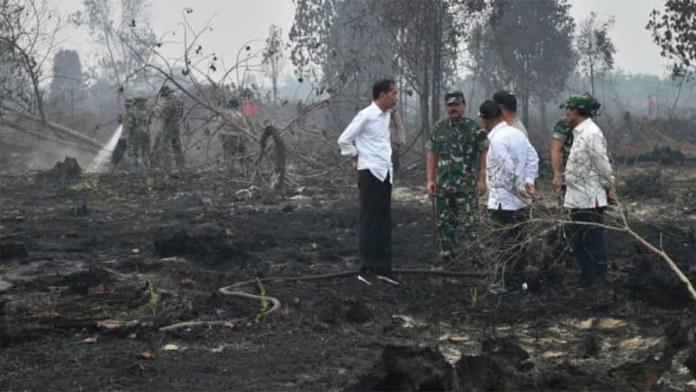 Karhutla Jokowi