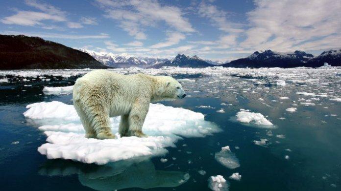 Suhu Global