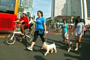 Bersepeda santai dan berjalan kaki