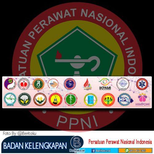 Organisasi Keseminatan Dan 8 Kolegium Di Dalam PPNI