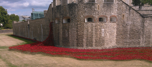 Poppies Towern