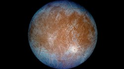 The search for extraterrestrial life begins at home