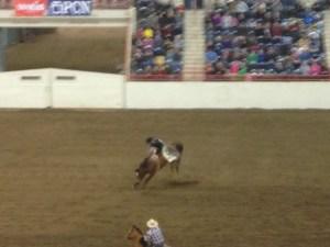 Junior-Rode-PA-Farm-Show