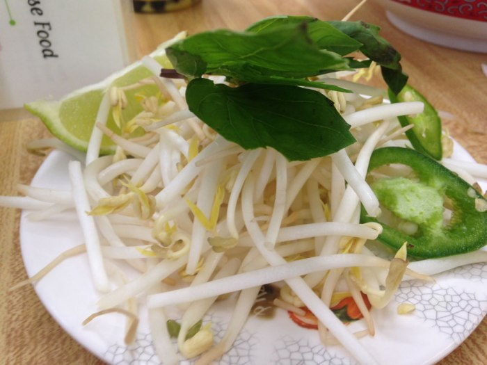 vietnamese-delights-pho-add-ins