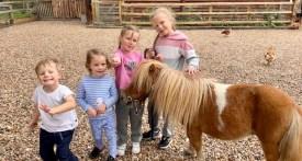 summer barn berkshire, summer barn oxfordshire, private hire farm