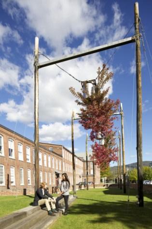 The famous courtyard upside-down trees, iconic clocktower and museum entrance. (Tree Logic, Natalie Jeremijenko)