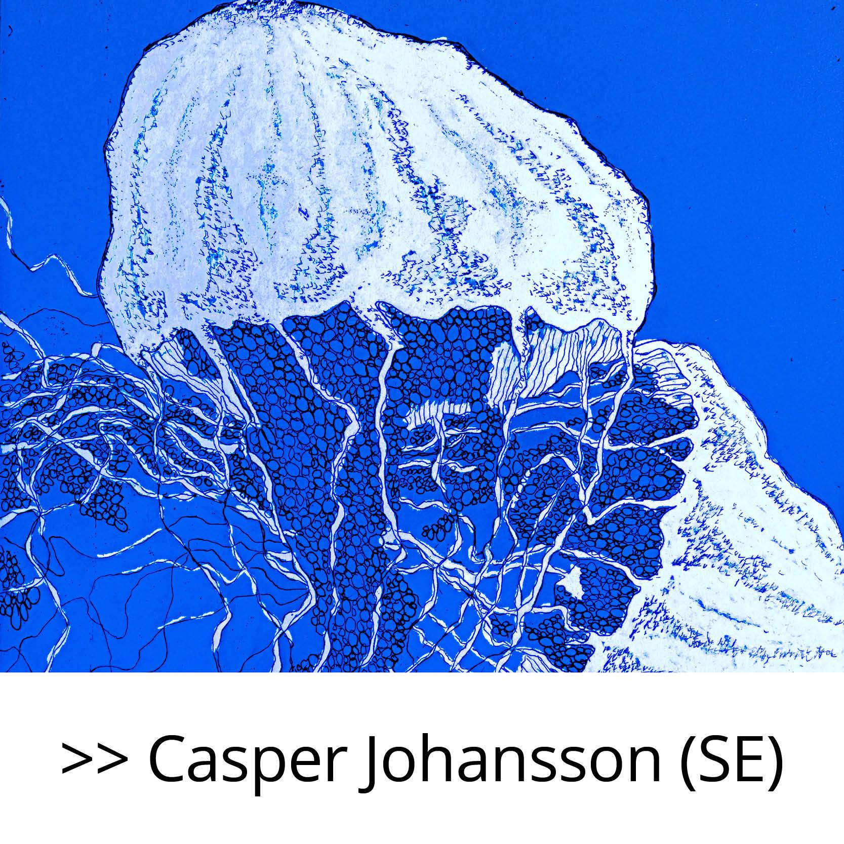 Casper_Johansson_(SE)
