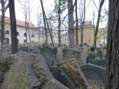 The Jewish Cemetery of Prague