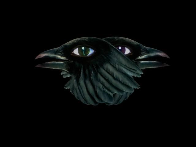 Crows-the-demons-brain-agnieszka-polska-2