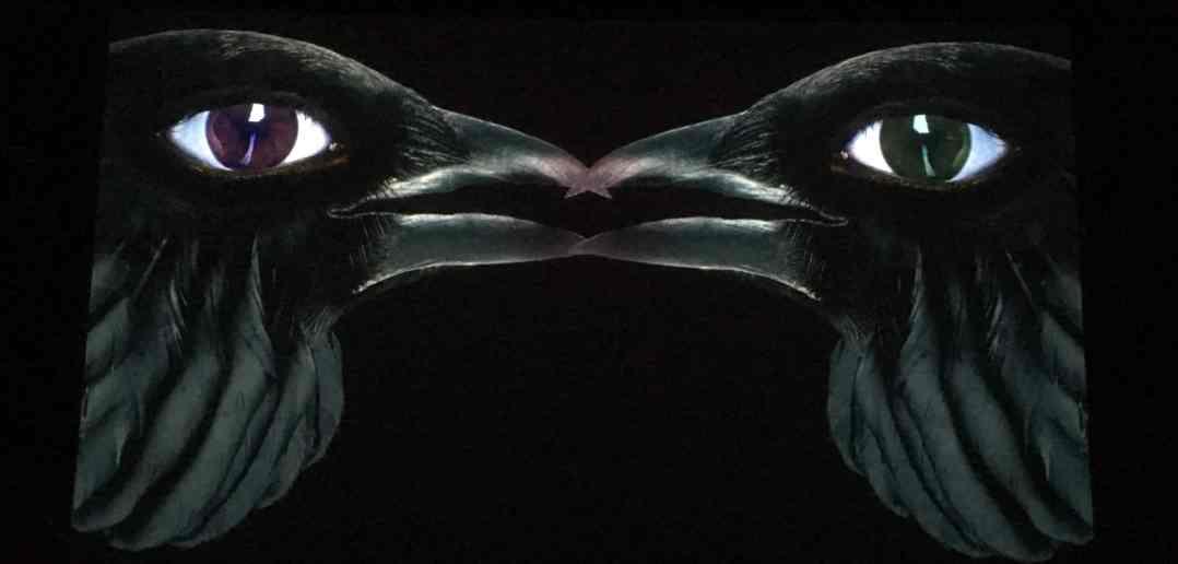 Crows-the-demons-brain-agnieszka-polska
