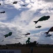 Kite Festival Aquiloni Berlino © Erica Bonifacio